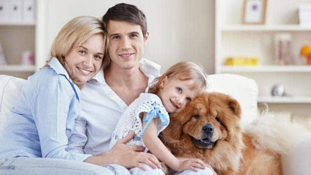 Wills & Trusts dog-young-family Direct Wills Old Oak Common
